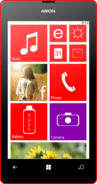 Vidmate apk for Windows